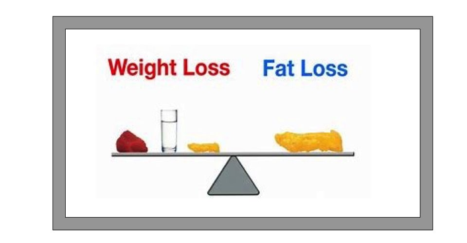 Tips on Fat Loss.  – James Griffiths. PT