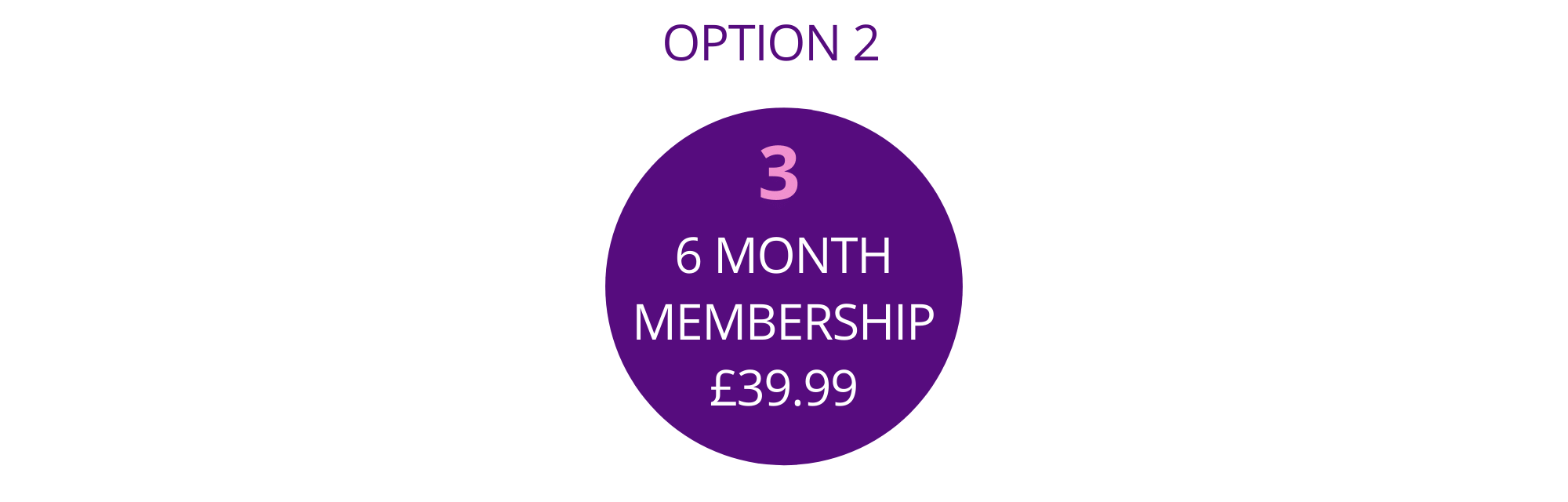 Bandboozled Membership Option 3